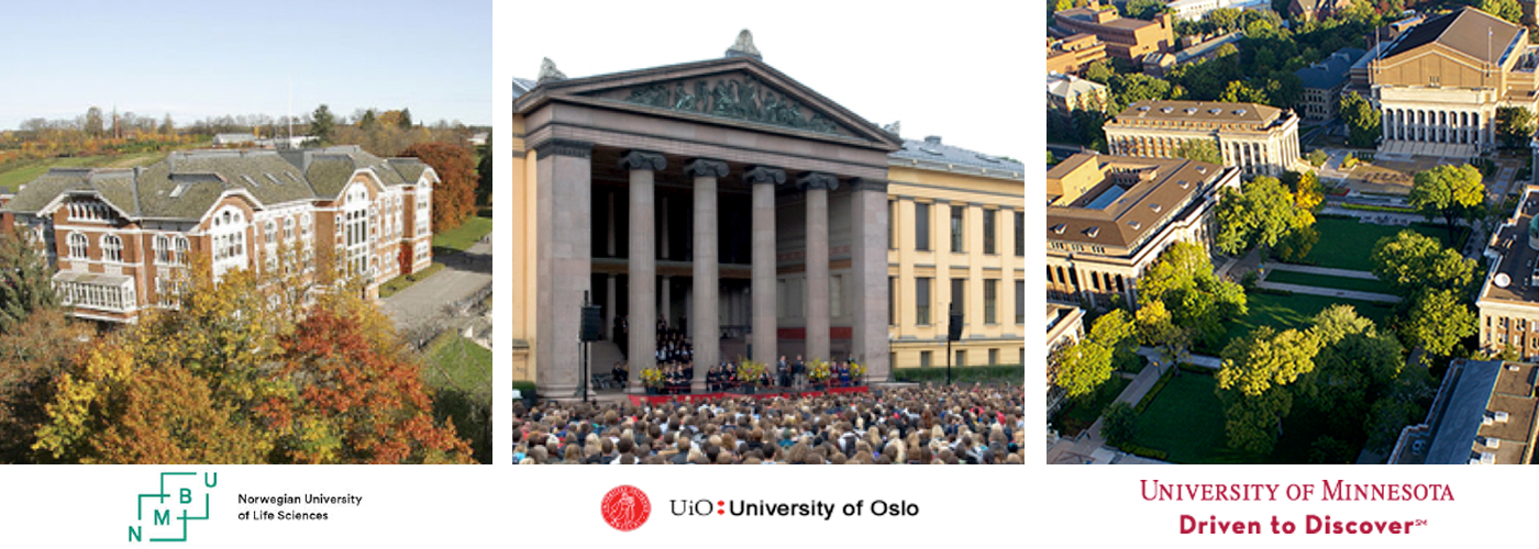 Norwegian Centennial Chair