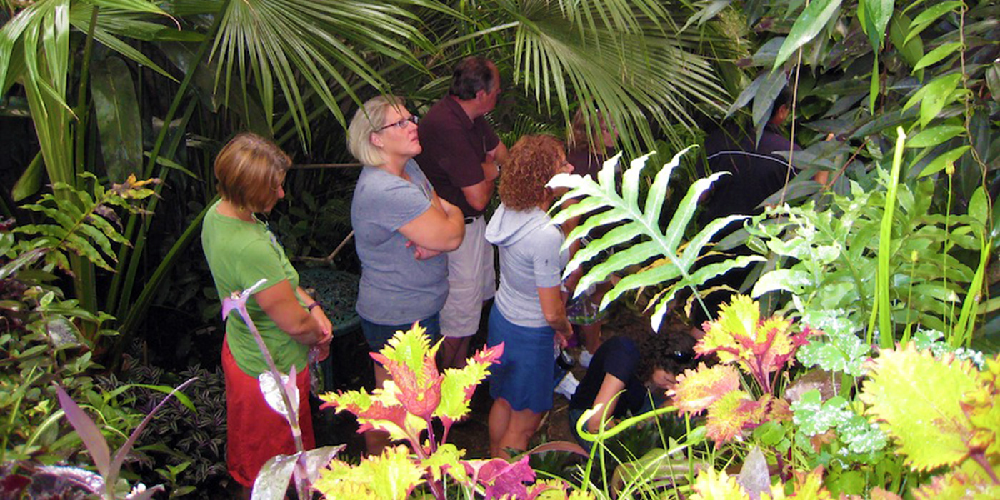 Teachers in greenhouse