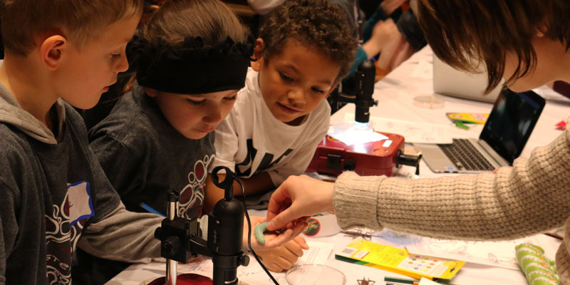 students learn about insect life cycles at STEM day