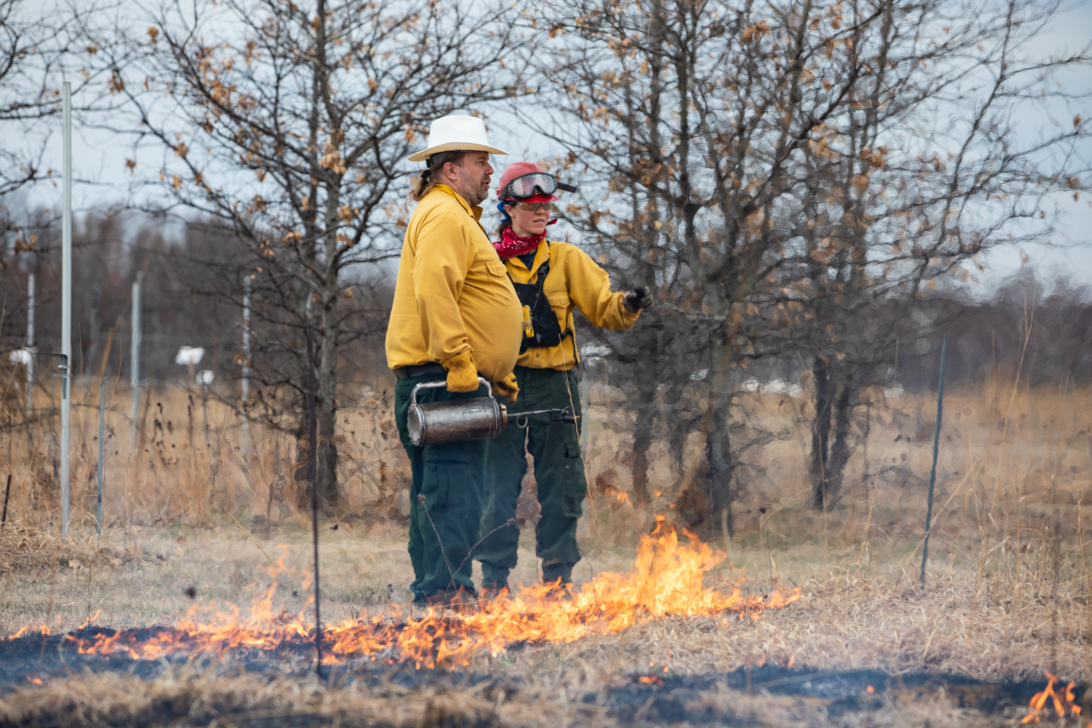 Cedar Creek prescribed burn
