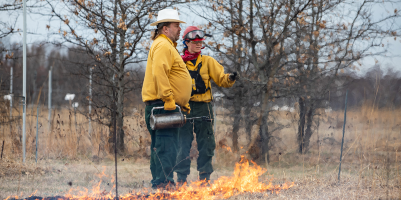 Prescribed burning at Cedar Creek