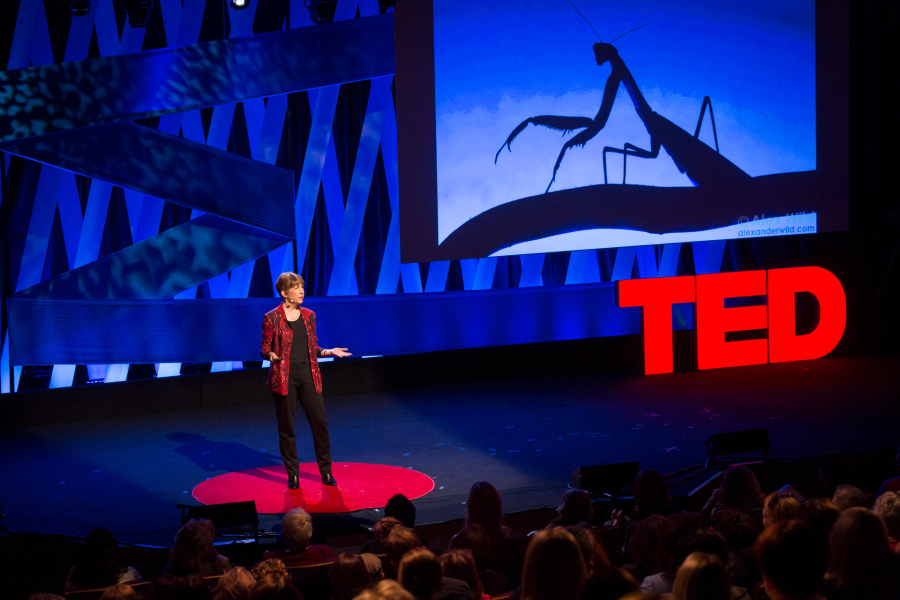 Marlene Zuk at TEDWomen