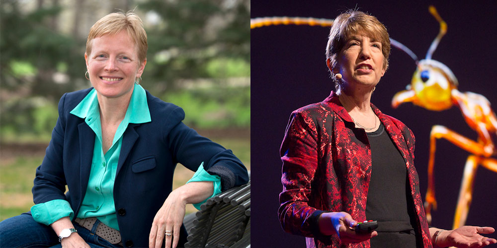 Sarah Hobbie and Marlene Zuk