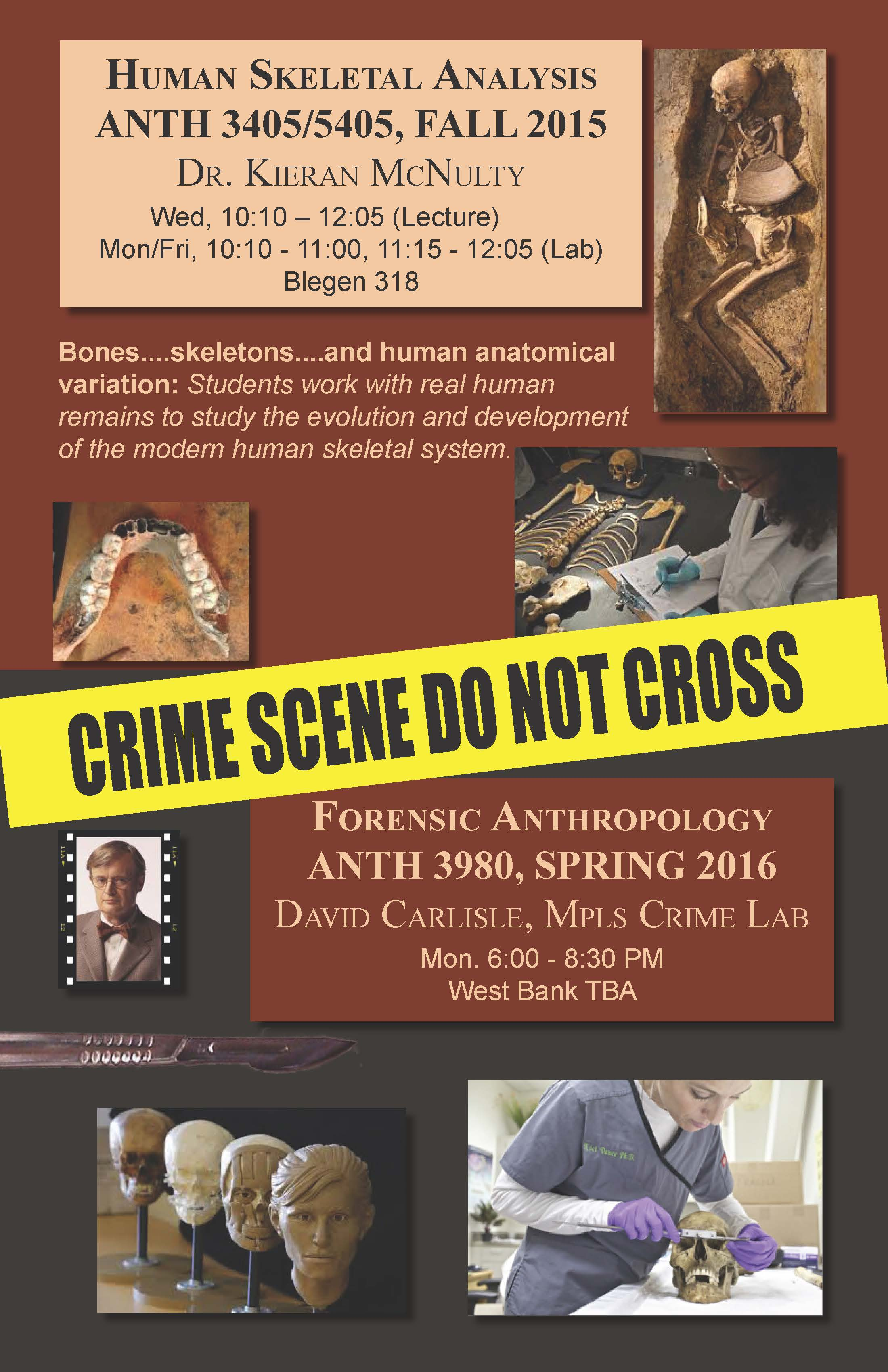 Forensic anthropology courses | College of Biological Sciences