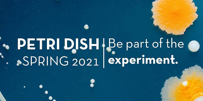 "Microbial growth in a petri dish with words ""Petri Dish 2021 