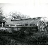 Greenhouse, Minneapolis campus. 1930