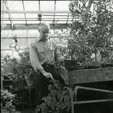 Brad Gregory in greenhouse, 1967