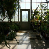 Cloud Forest - Maritime room